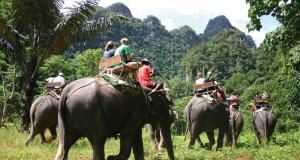 elephant-riding
