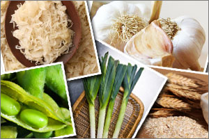 prebiotic-foods