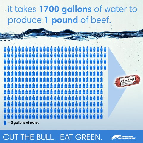 water-beef-infographic